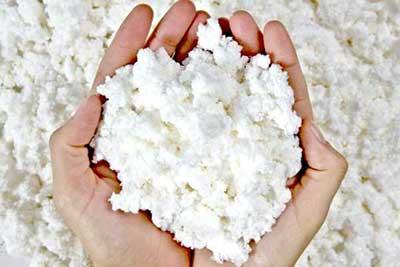 Pasta Química de Madeira
